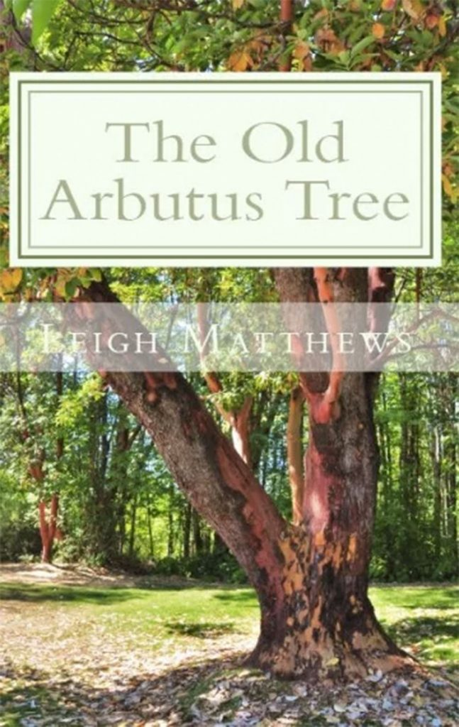 The Old Arbutus Tree
